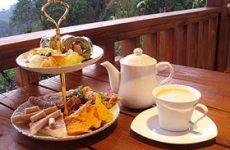 Tè cinese: delizioso ed elegante